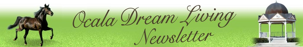 Ocala Dream Living Newsletter